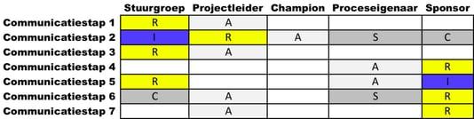 RASCI voorbeeld 1.png