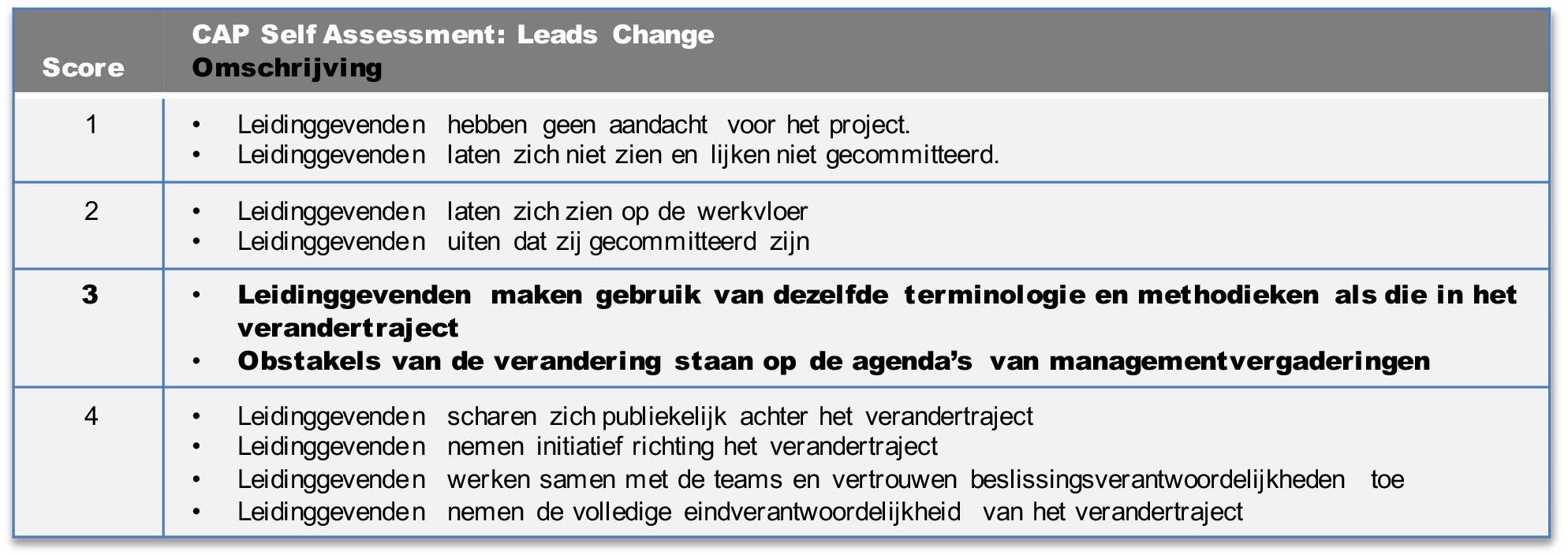 cap model leading change voorbeeld 2.png