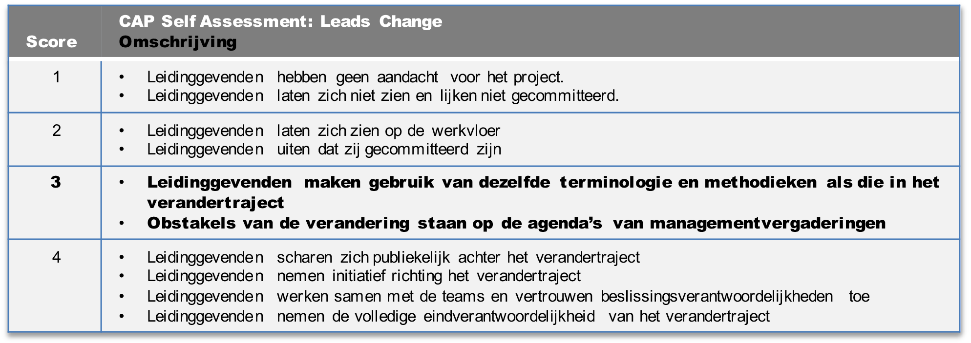 cap model leading change voorbeeld 2.png