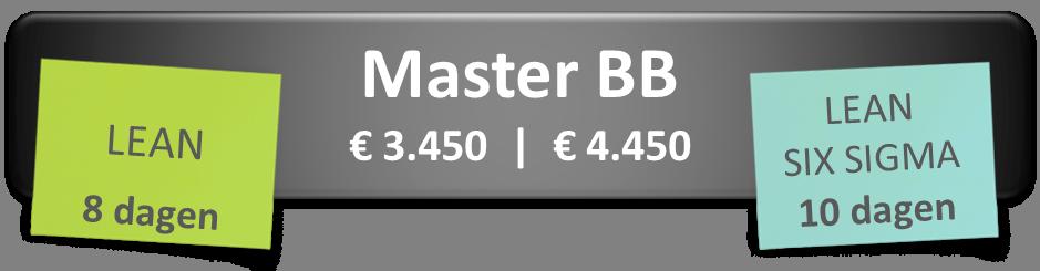 Master Black Belt trainingen
