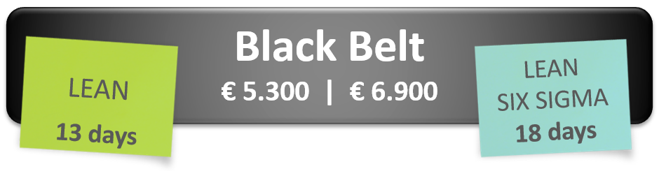 black-belt-english