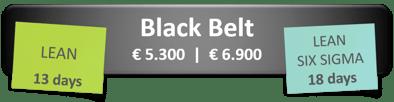 black-belt-english