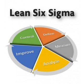 lean-six-sigma-300x336-1.jpg