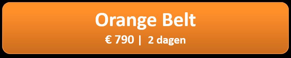orange-belt.png