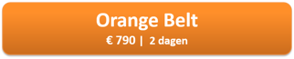 orange-belt.png