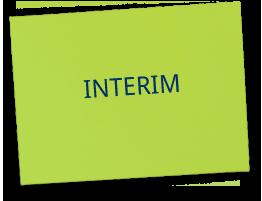 Interim voor Lean Six Sigma