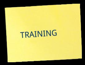 Training Orange Belt